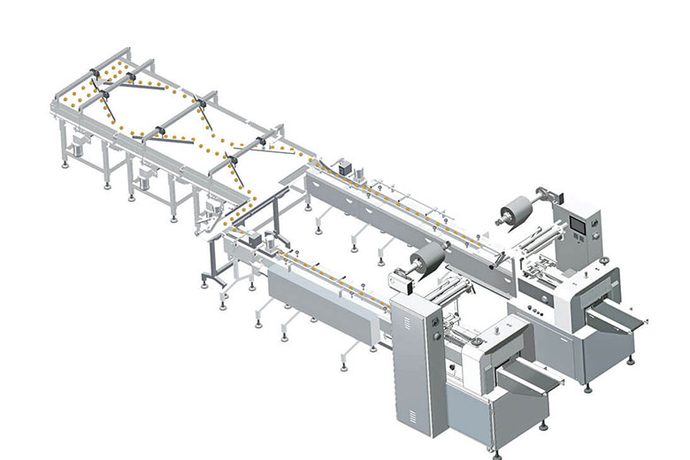 automatic feeding & packing line cb-zf2 | chlbpack